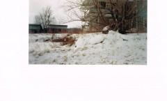 Première visite en 2003